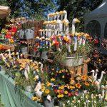 Inspiration Home & Garden Messe